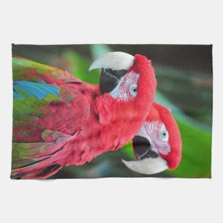 Two colorful macaw parrots tea towel