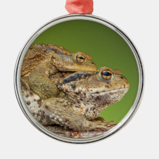Two Common Toads Bufo Bufo Together Silver-Colored Round Decoration