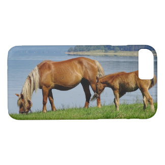 Two Countryside Horses Grazing by Lake Photograph iPhone 8/7 Case