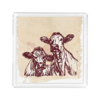 Two cows hand draw sketch & watercolor vintage