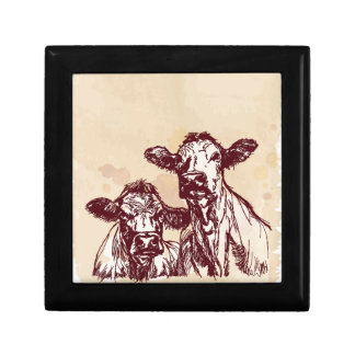 Two cows hand draw sketch & watercolor vintage gift box