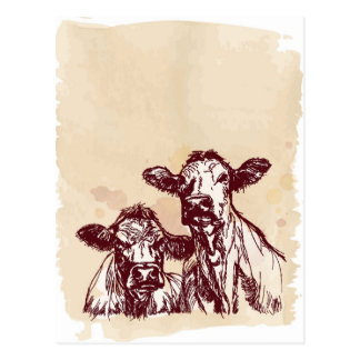 Two cows hand draw sketch & watercolor vintage postcard