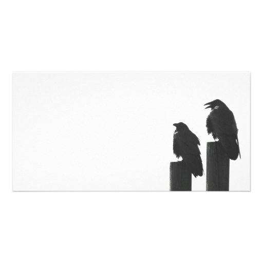 Two crows on posts personalized photo card