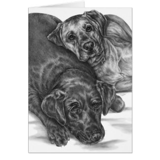 Two Cuddly Dogs Drawing by Kelli Swan Card