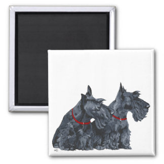 Two Curious Scottish Terriers Square Magnet
