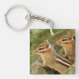 Two Cute Baby Chipmunks Acrylic Keychain