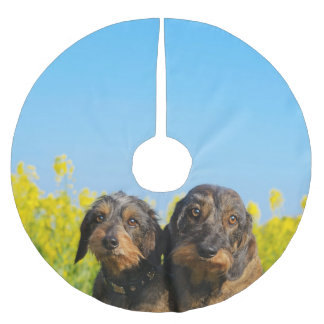 Two Cute Dachshund Dogs Dackel Head Portrait Photo Brushed Polyester Tree Skirt