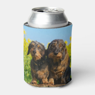 Two Cute Dachshund Dogs Dackel Photo Funny Bawdle Can Cooler