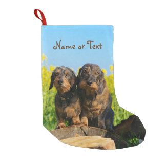 Two Cute Dachshunds Dogs Dackel Friends Pet - Name Small Christmas Stocking