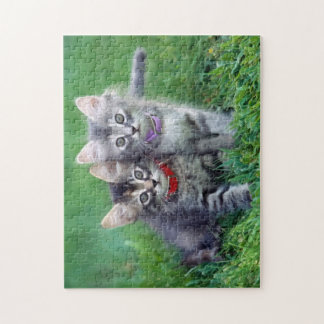 Two Cute Gray Kittens Puzzle