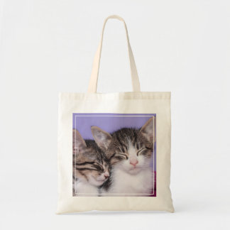 Two Cute Kittens Napping Budget Tote Bag