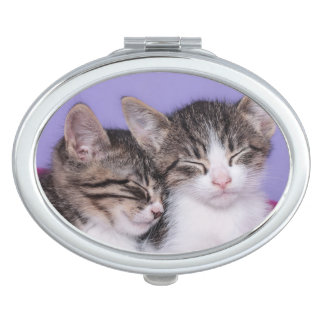 Two Cute Kittens Napping Vanity Mirror