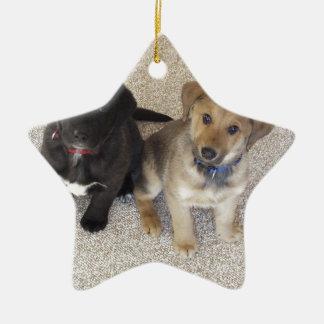 Two Cute Labrador Puppies Ceramic Star Decoration