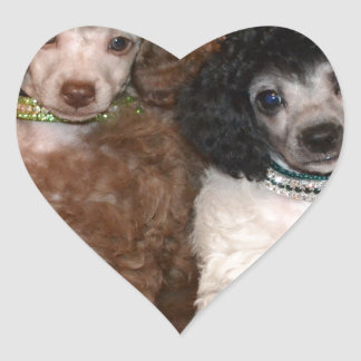 Two Cute Poodle Toy Poodle Puppies Heart Sticker