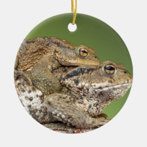 Two Cute Toads Christmas Tree Ornaments