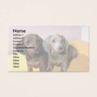 Two Dachshund pups Business Card