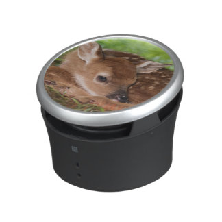 Two day old White-tailed Deer baby, Kentucky. Bluetooth Speaker