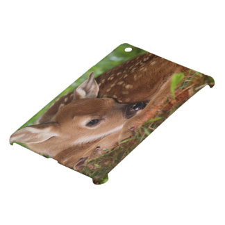 Two day old White-tailed Deer baby, Kentucky. Cover For The iPad Mini