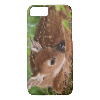 Two day old White-tailed Deer baby, Kentucky. iPhone 8/7 Case