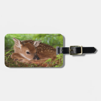 Two day old White-tailed Deer baby, Kentucky. Luggage Tag