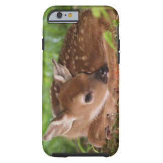 Two day old White-tailed Deer baby, Kentucky. Tough iPhone 6 Case