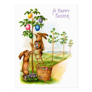 Two Decorating Rabbits Postcard