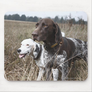 Two Dogs in Field, Houston, Texas, USA Mouse Pad