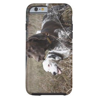 Two Dogs in Field, Houston, Texas, USA Tough iPhone 6 Case