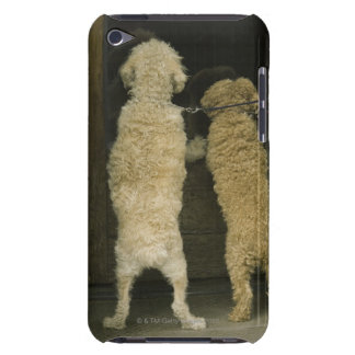 Two dogs looking in door window, rear view iPod touch cases