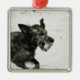 Two dogs playing on a beach. christmas ornament