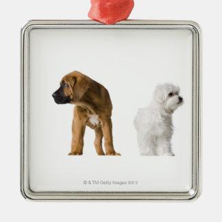 Two Dogs Silver-Colored Square Decoration