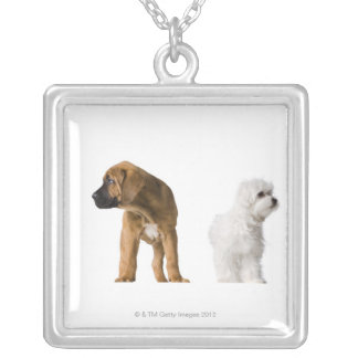 Two Dogs Silver Plated Necklace