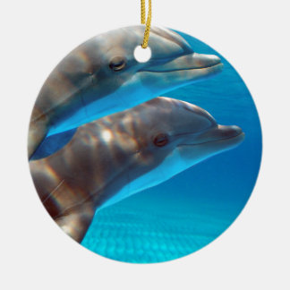 Two Dolphins swimming Christmas Ornament