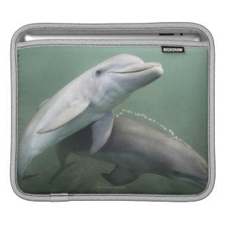 Two Dolphins underwater iPad Sleeve