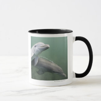 Two Dolphins underwater Mug