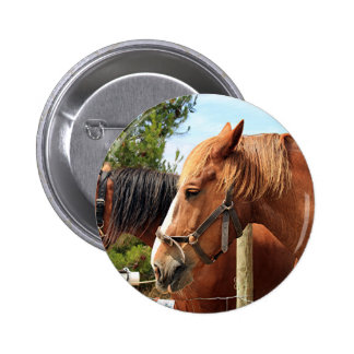 Two draft horses 6 cm round badge