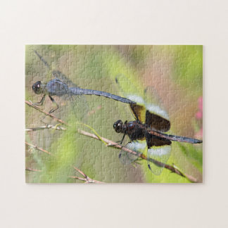 Two dragonflies jigsaw puzzle