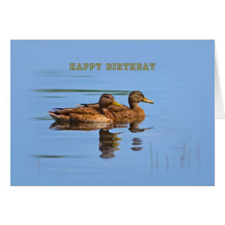Two Ducks Birthday Card