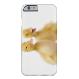 Two ducks with Easter Eggs Barely There iPhone 6 Case