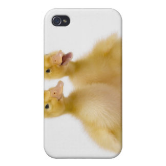Two ducks with Easter Eggs iPhone 4 Case