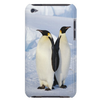 Two Emperor Penguins in Antarctica iPod Touch Cases