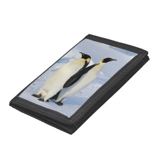 Two Emperor Penguins in Antarctica Trifold Wallets