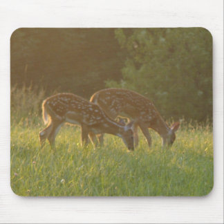 Two Fawns Grazing Mouse Pad