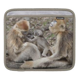 Two female Golden Monkeys with newborns iPad Sleeve