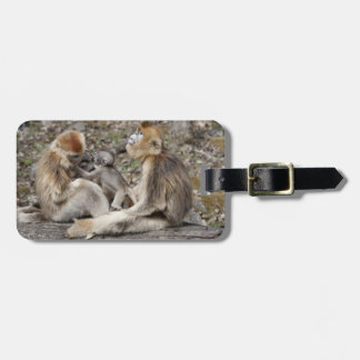 Two female Golden Monkeys with newborns Luggage Tag
