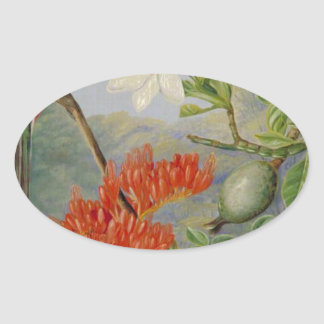 Two Flowering Shrubs of Natal and a Trogon Oval Sticker