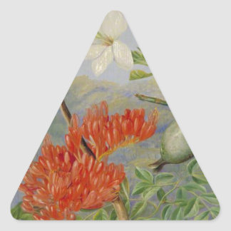 Two Flowering Shrubs of Natal and a Trogon Triangle Sticker