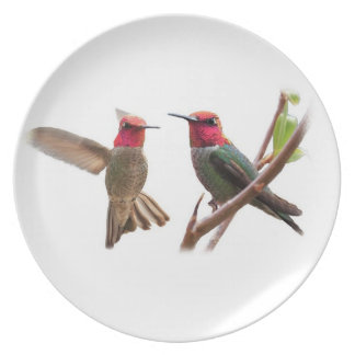TWO FLYING JEWELS DINNER PLATES