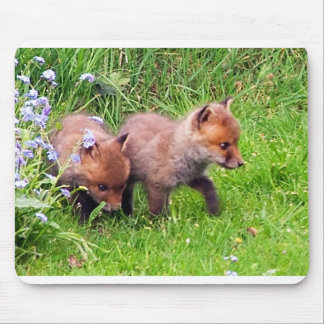 two fox cubs mouse mat