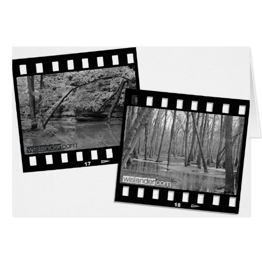 Two Frame image Greeting Card